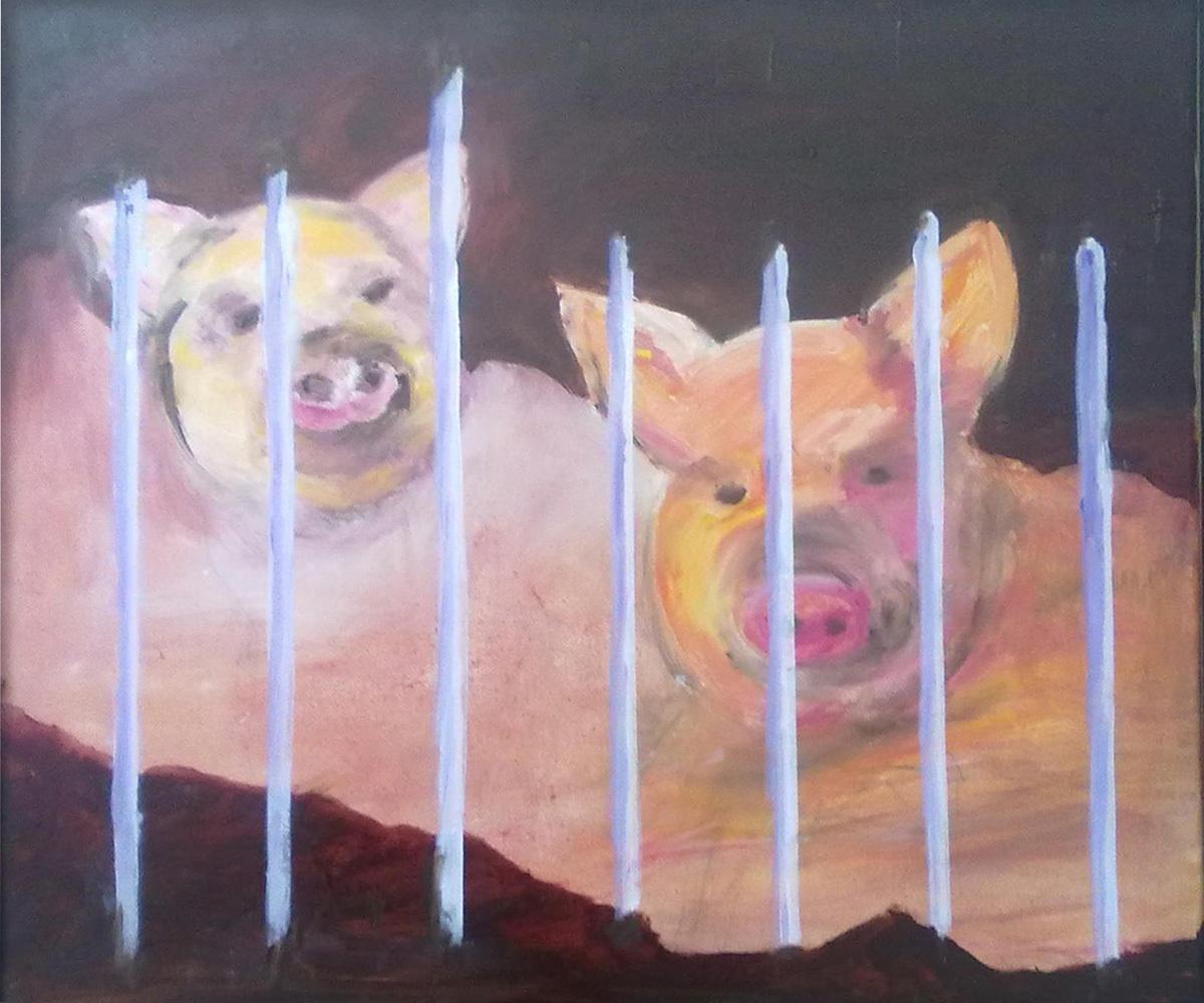 Schweineblicke, Öl auf Leinwand, 50 x 60 cm.